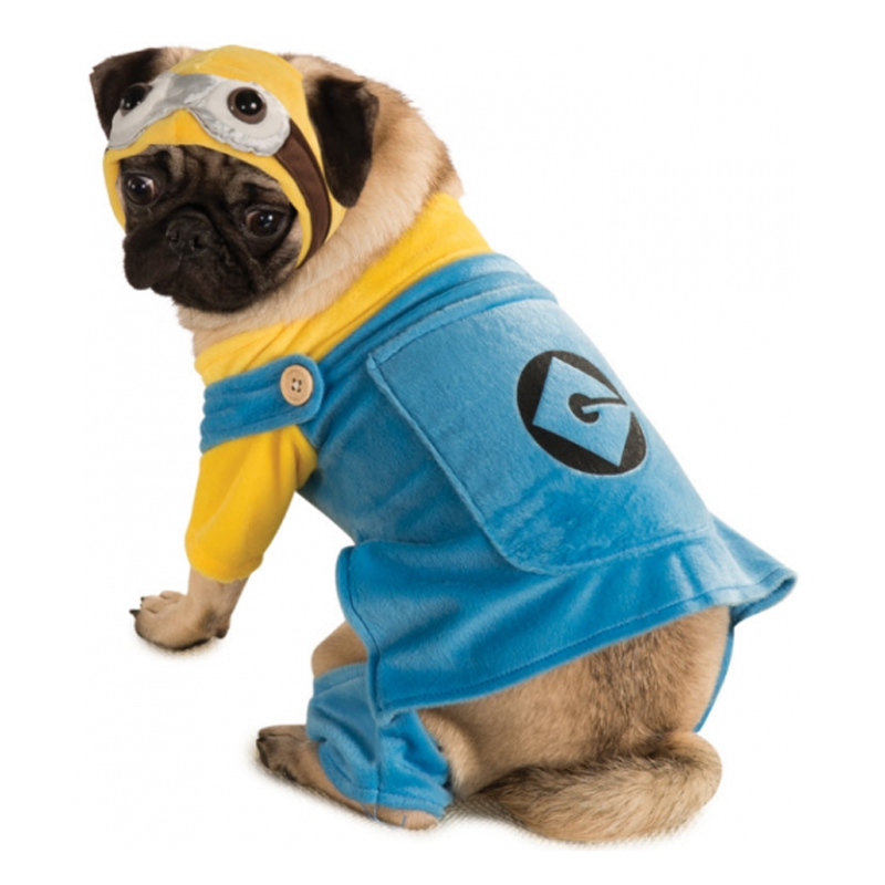 Minion Dog Costume  sc 1 st  BaxterBoo & Minion Dog Costume with Same Day Shipping | BaxterBoo