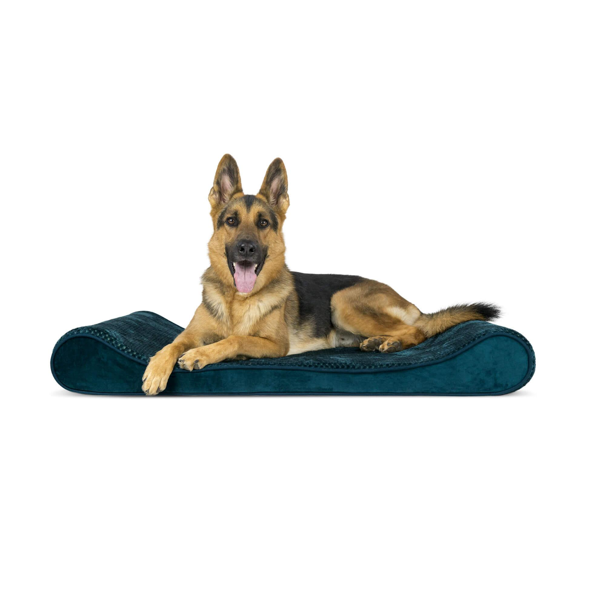 Minky Plush & Velvet Luxe Lounger Orthopedic Dog Bed - Spruce Blue