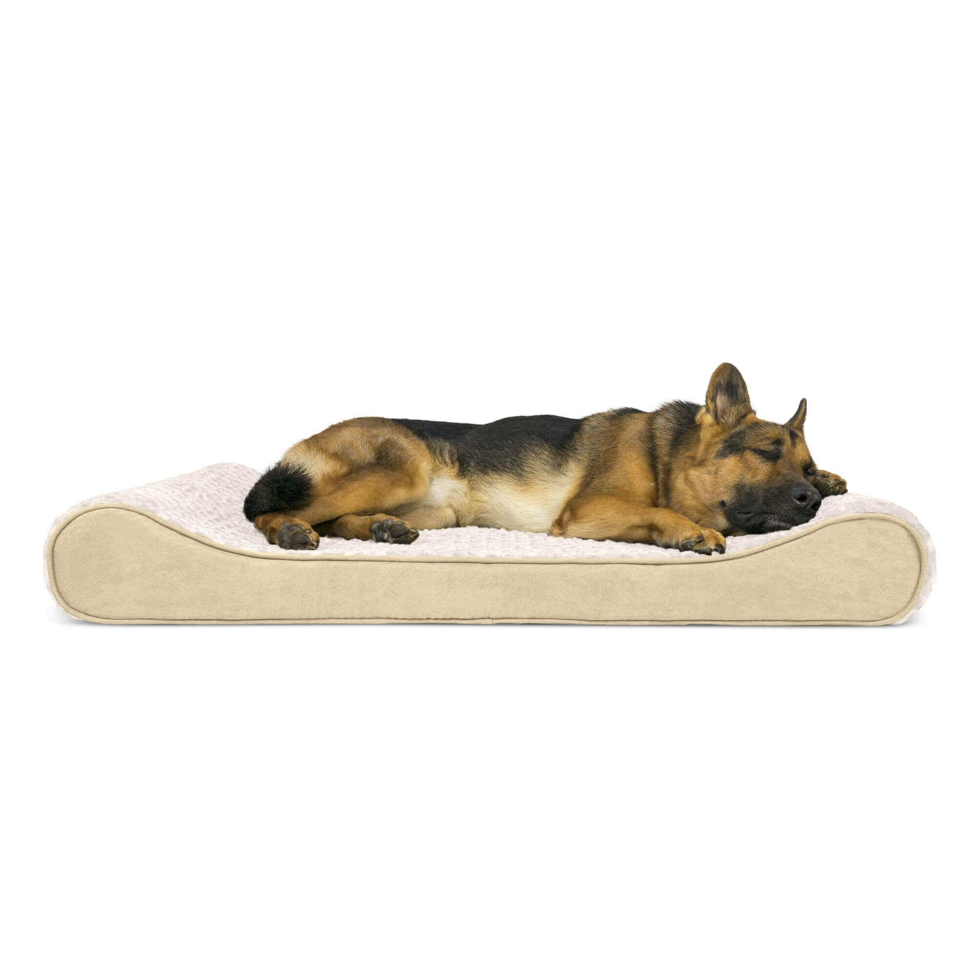 Ultra Plush Luxe Lounger Orthopedic Dog Bed - Cream