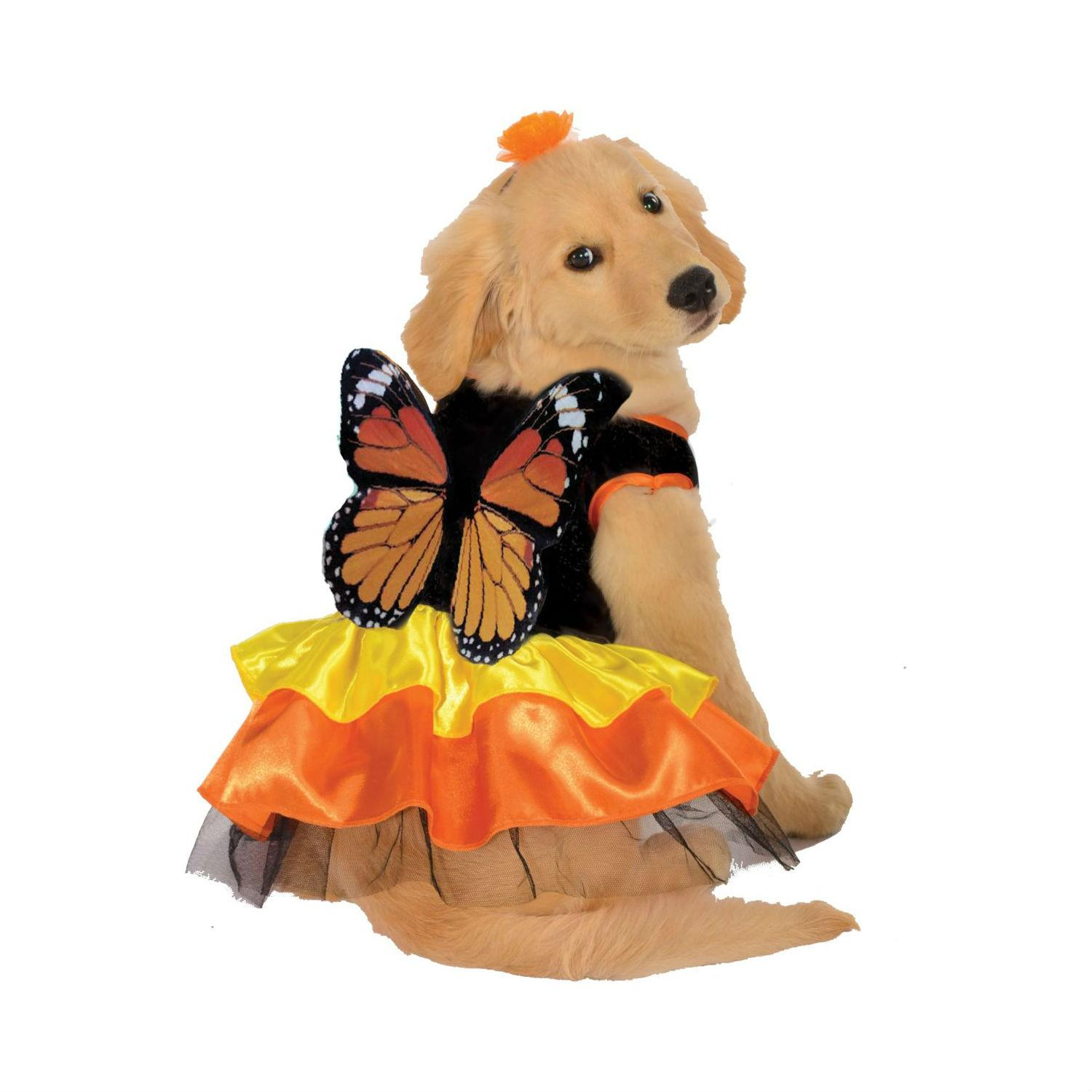 Monarch Butterfly Dog Dress Costume by Rubies