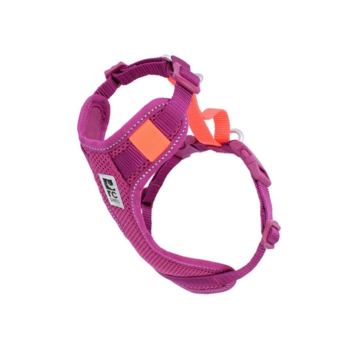 Moto Control Dog Harness - Mulberry/Hot Coral