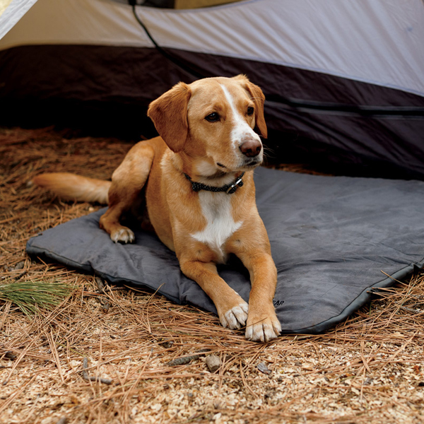 Mt. Bachelor Pad Dog Bed by RuffWear - Overcast Blue
