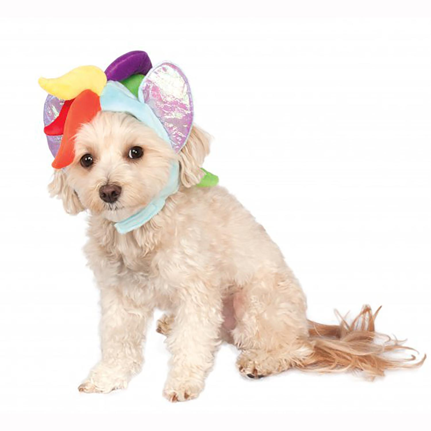 My Little Pony Rainbow Dash Dog Hood Costume