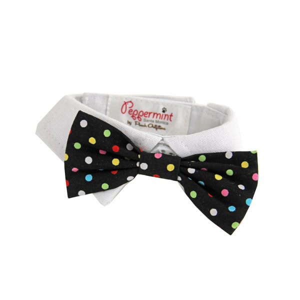 Nathan Polka Dot Dog Shirt Collar and BowTie