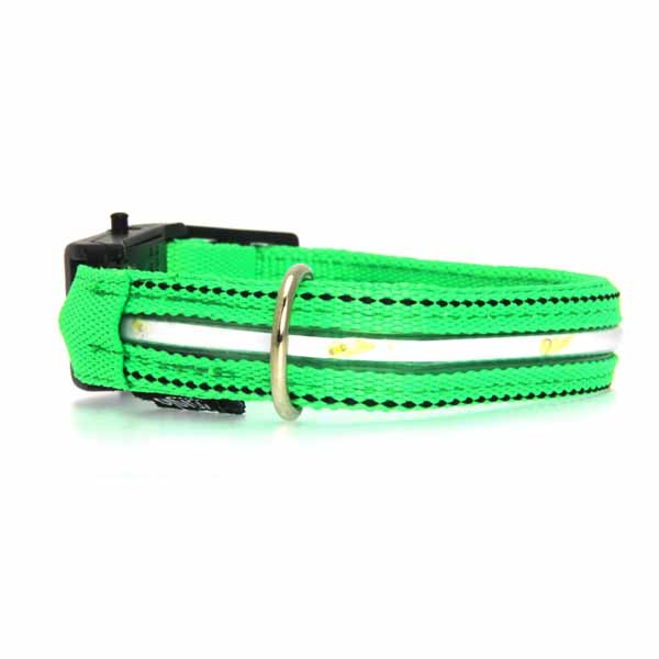 Neon Dog Collar with White LEDs - Green