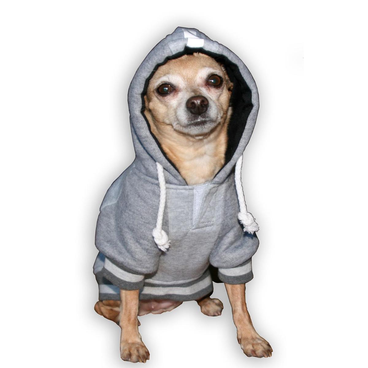 the best attitude 01e3d 5dcc0 New England Patriots NFL Dog Hoodie - Gray