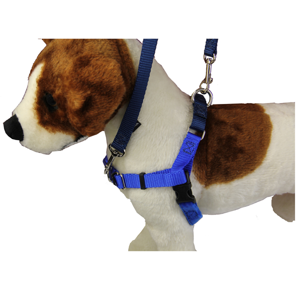 nopull dog harness deluxe training package navy royal blue 1 no pull dog harness deluxe training package baxterboo
