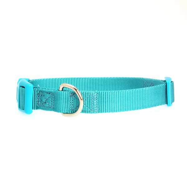 Nylon Dog Collar by Zack & Zoey - Bluebird