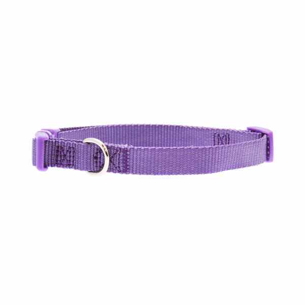 Nylon Dog Collar by Zack & Zoey - Light Plum