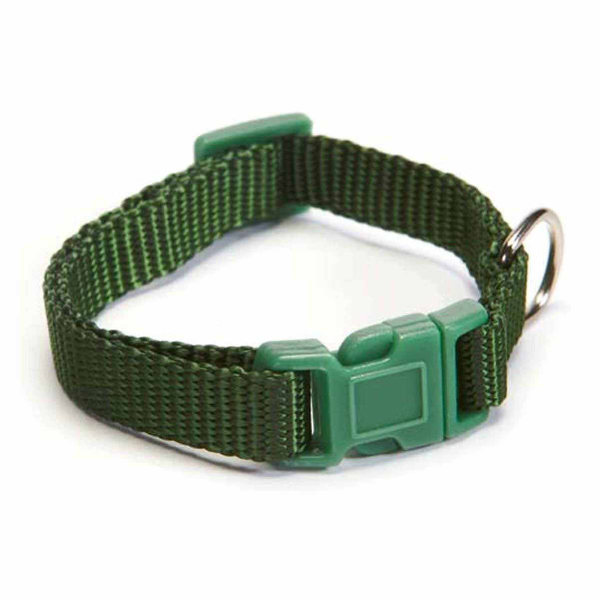 Zack Zoey Dog Collars