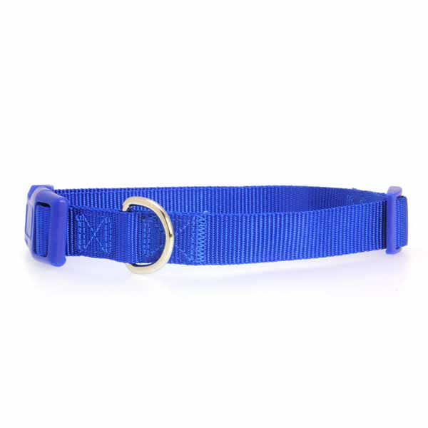 Nylon Dog Collar by Zack & Zoey - Nautical Blue