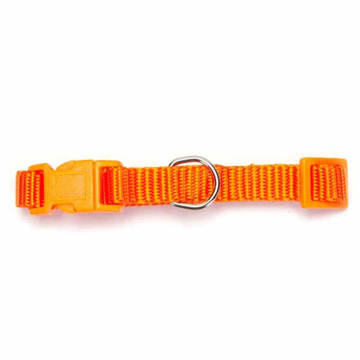 Nylon Dog Collar by Zack and Zoey - Orange