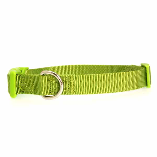 Nylon Dog Collar by Zack & Zoey - Lime Green