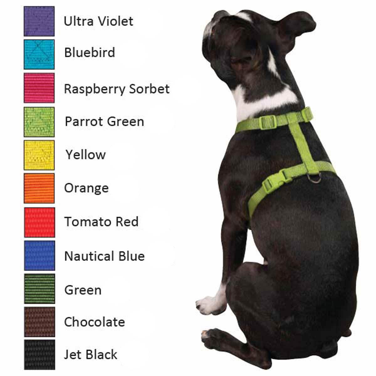 Nylon Dog Harness by Zack and Zoey - Orange