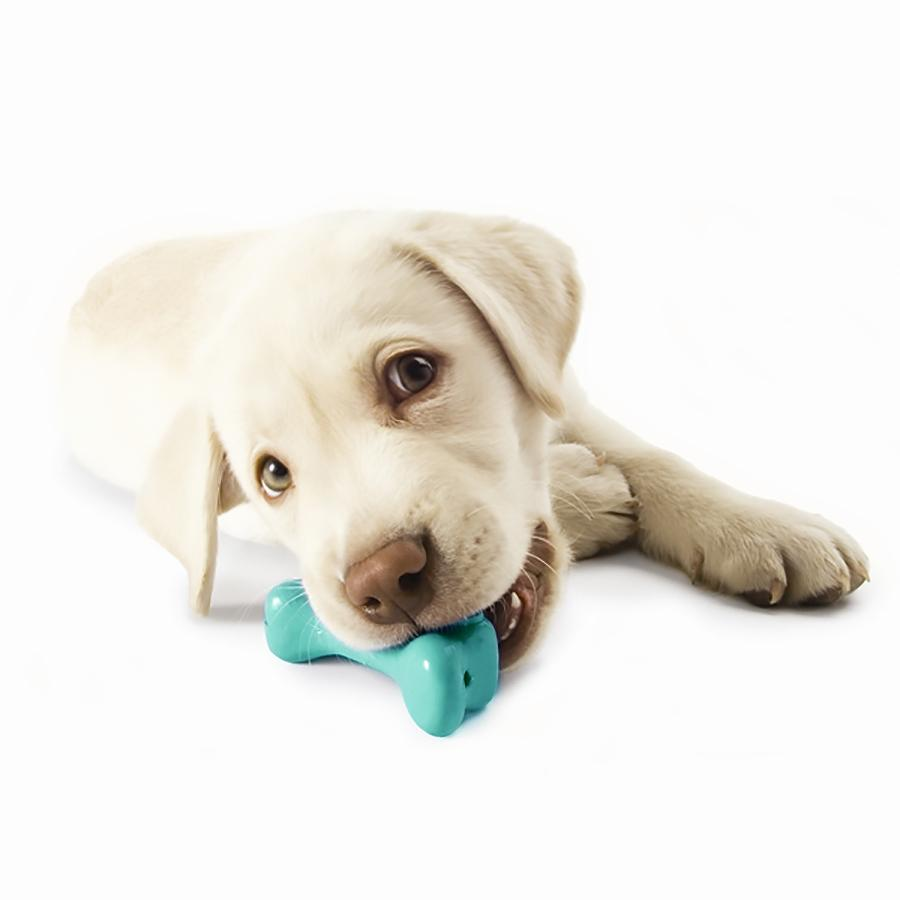 Orbee-Tuff Pup Bone Toy by Planet Dog - Teal