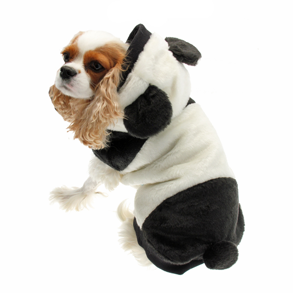 panda dog coat by dogo with same day shipping baxterboo