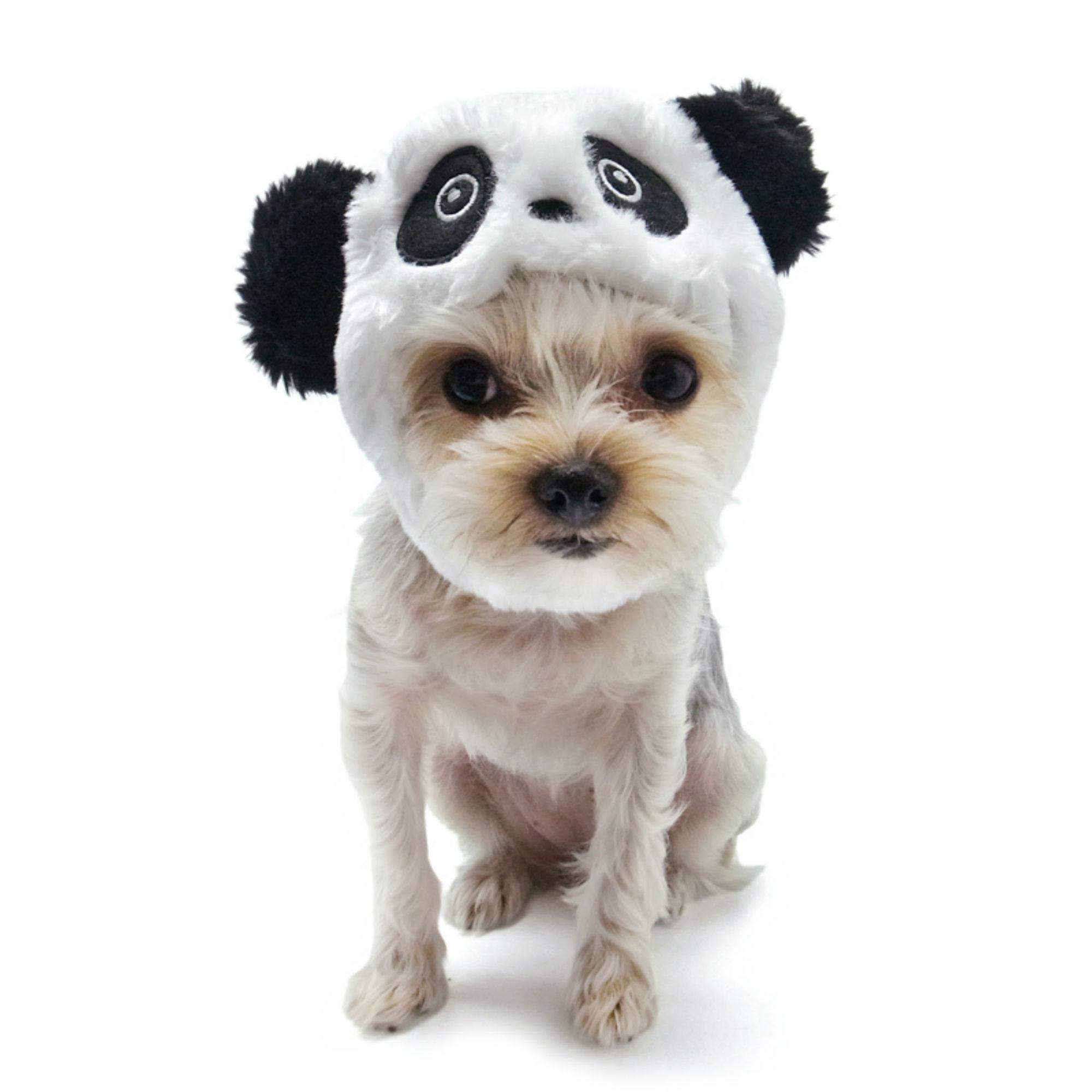 e02aaa5cb81 Panda Dog Hat by Dogo