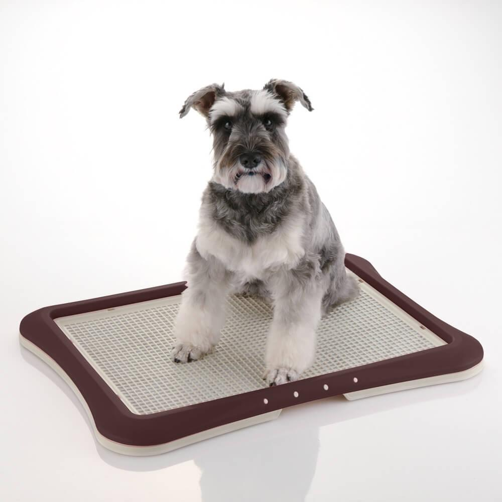 PAW TRAX® Dog Mesh Training Tray - Brown