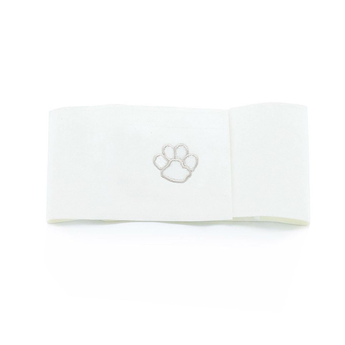 Paws Wizzer Dog Belly Band by Susan Lanci - White