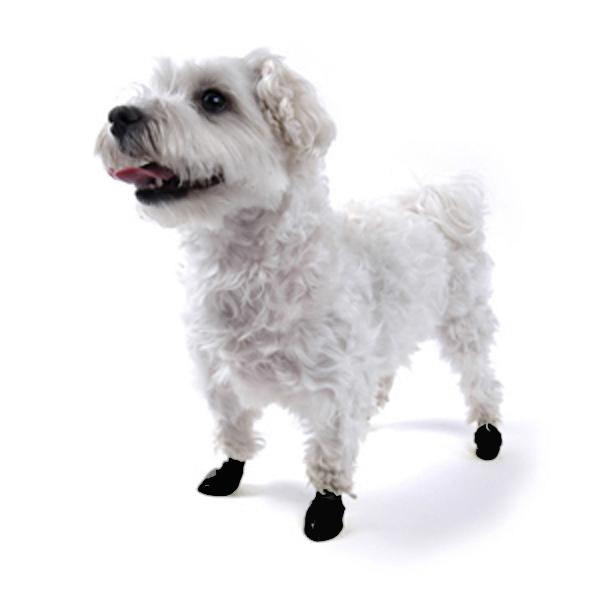 PawZ Disposable Dog Booties 12pk - Black