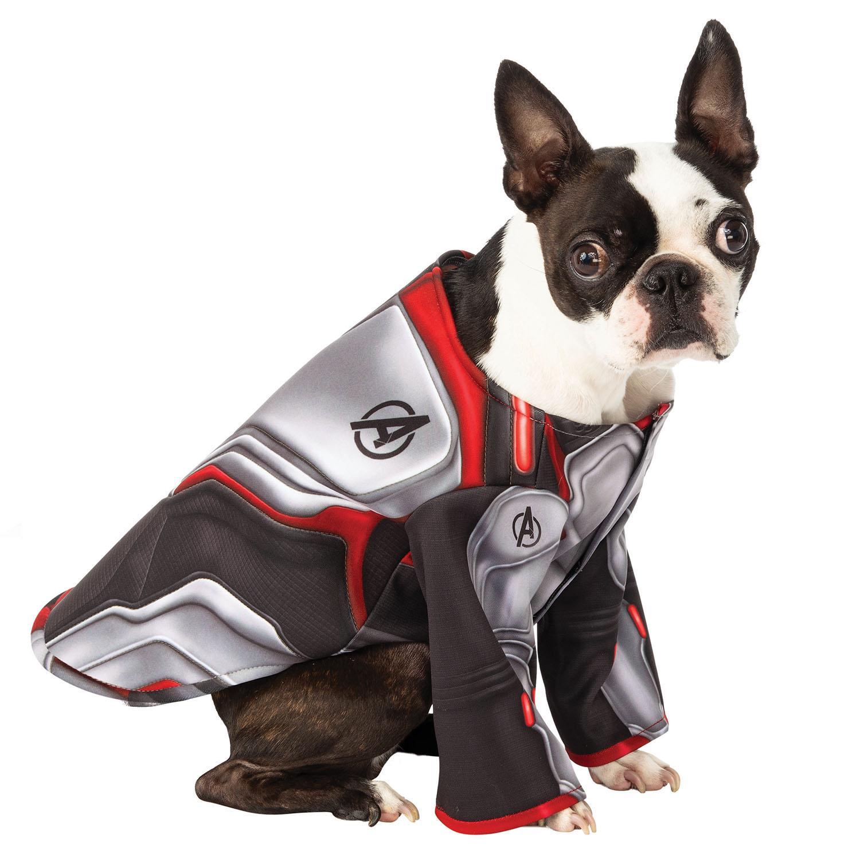 Pet Avengers: Endgame Team Suit Dog Costume