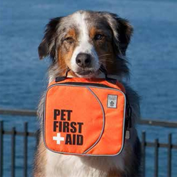Pet First Aid Kit by Canine Friendly