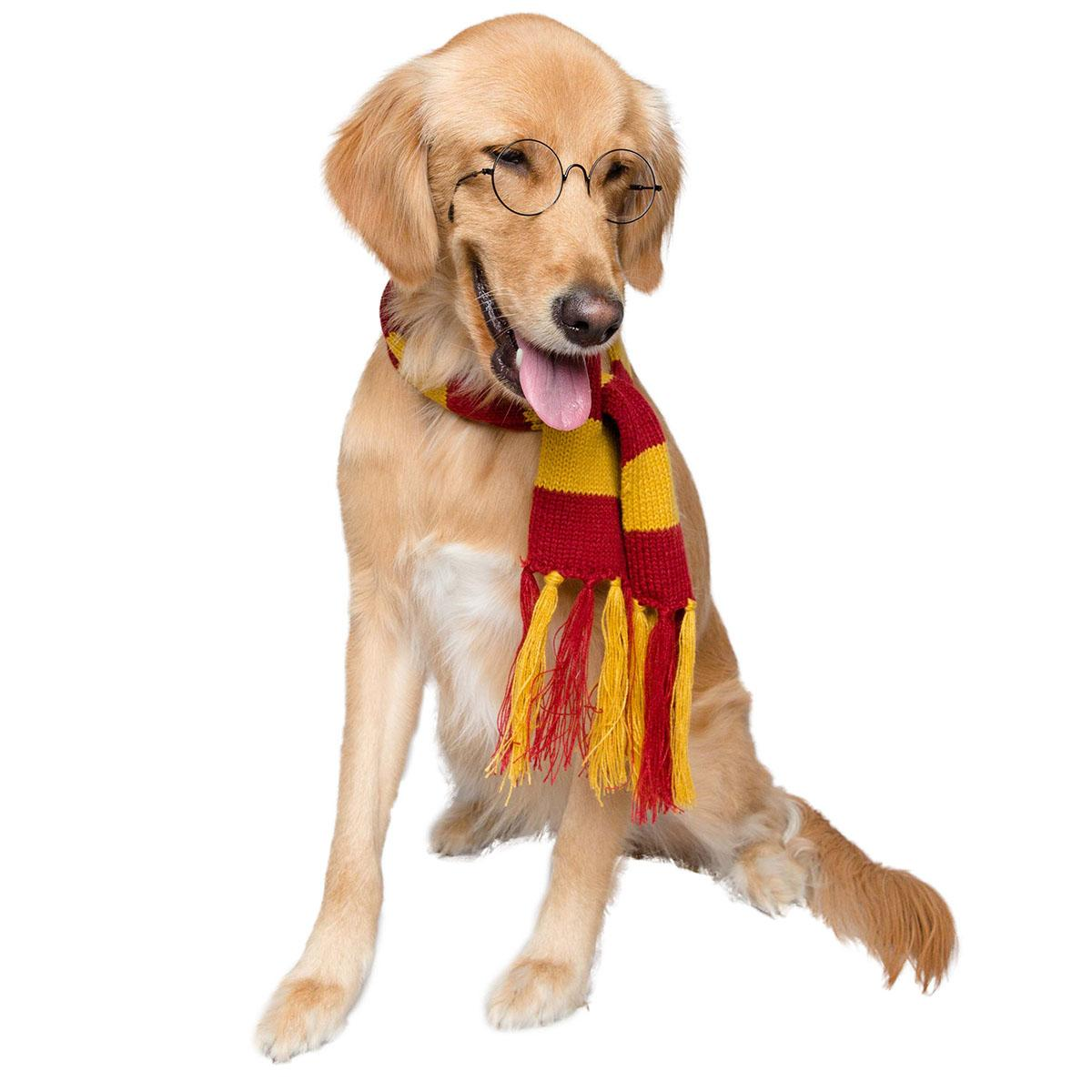 Pet Krewe Hipster Wizard Dog Scarf