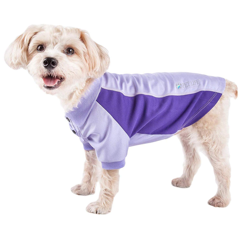 Pet Life ACTIVE 'Barko Pawlo' Performance Dog Polo - Lavender