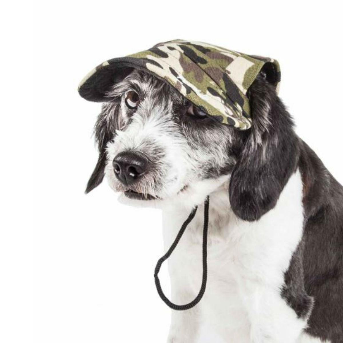 Pet Life 'Torrential Downfour' UV Protectant Dog Hat Cap - Camouflage