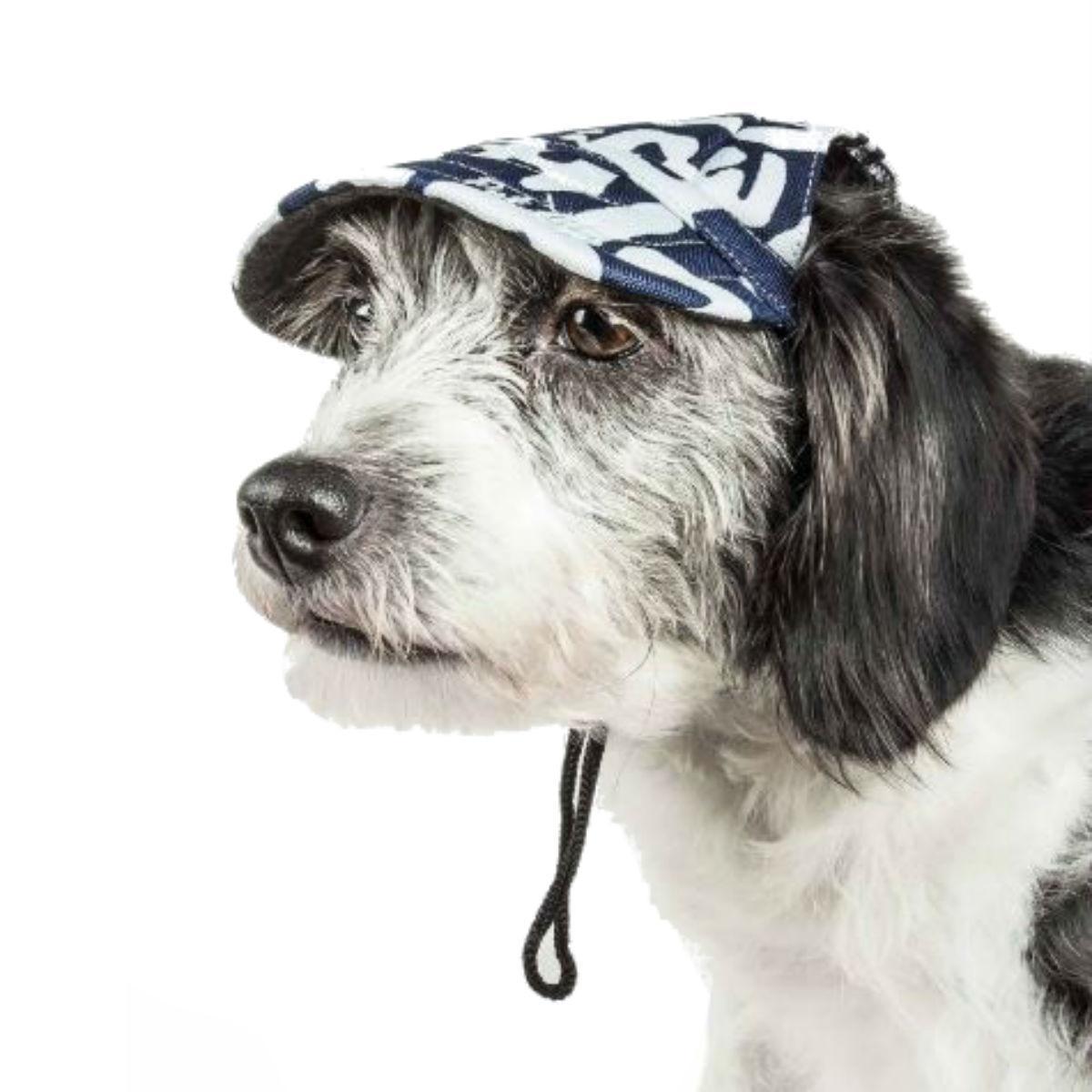 Pet Life 'Bone Cappa' UV Protectant Dog Hat Cap - Zebra Graffiti