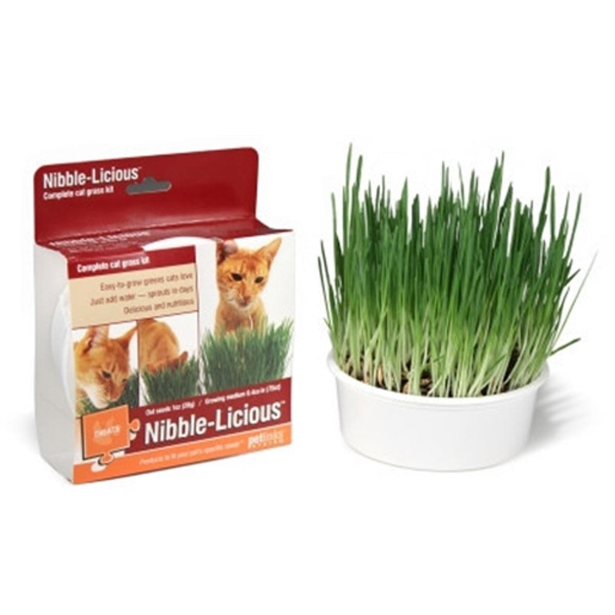 Petlinks Nibble-Licious Kit Cat Grass Treat