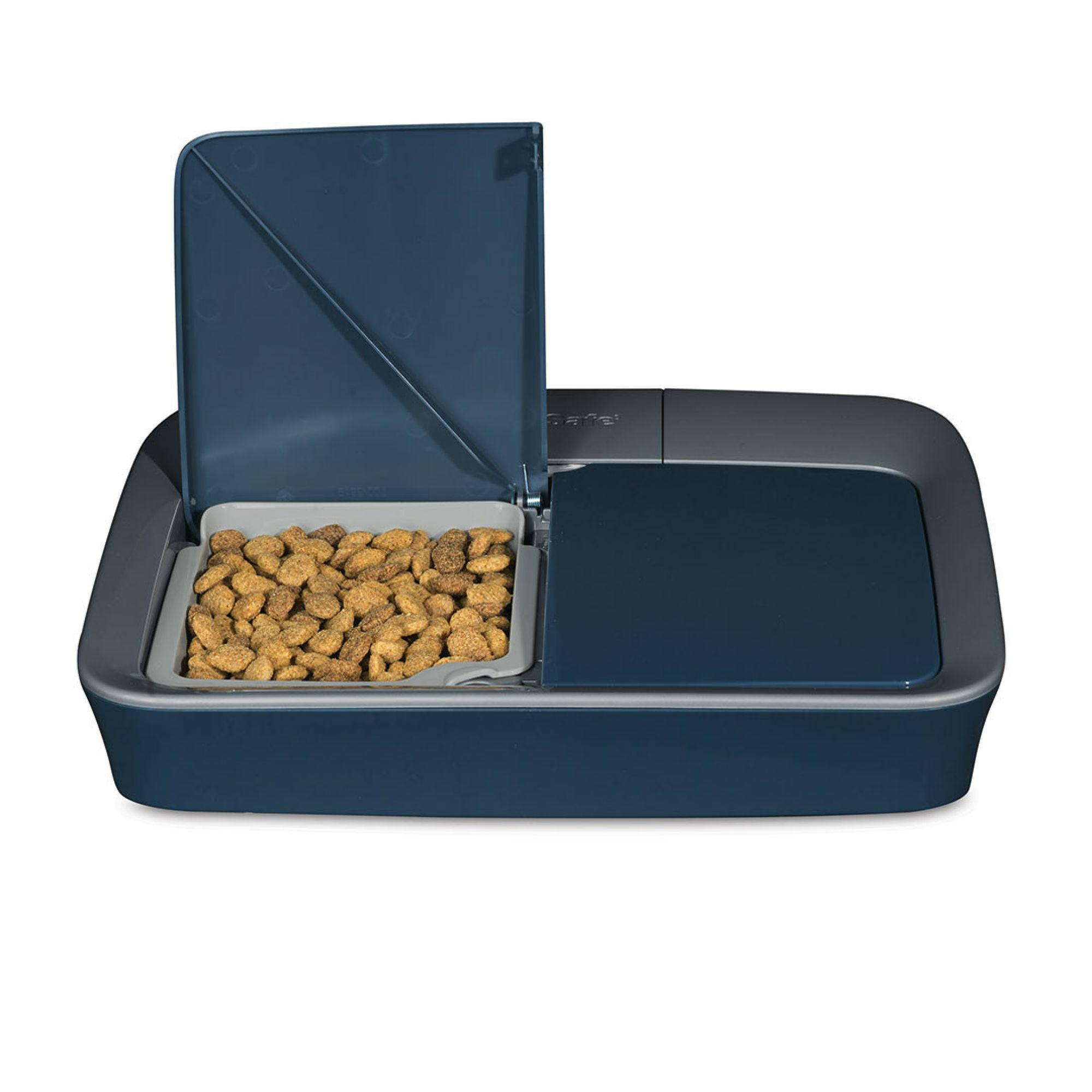 PetSafe Two Meal Automatic Pet Feeder