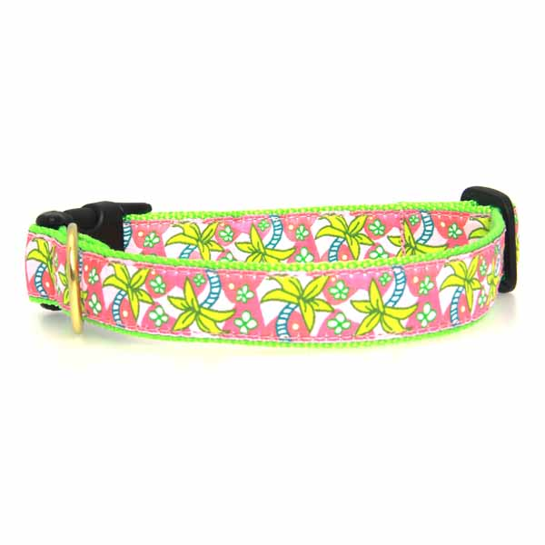 Pink Palms Dog Collar by Up Country