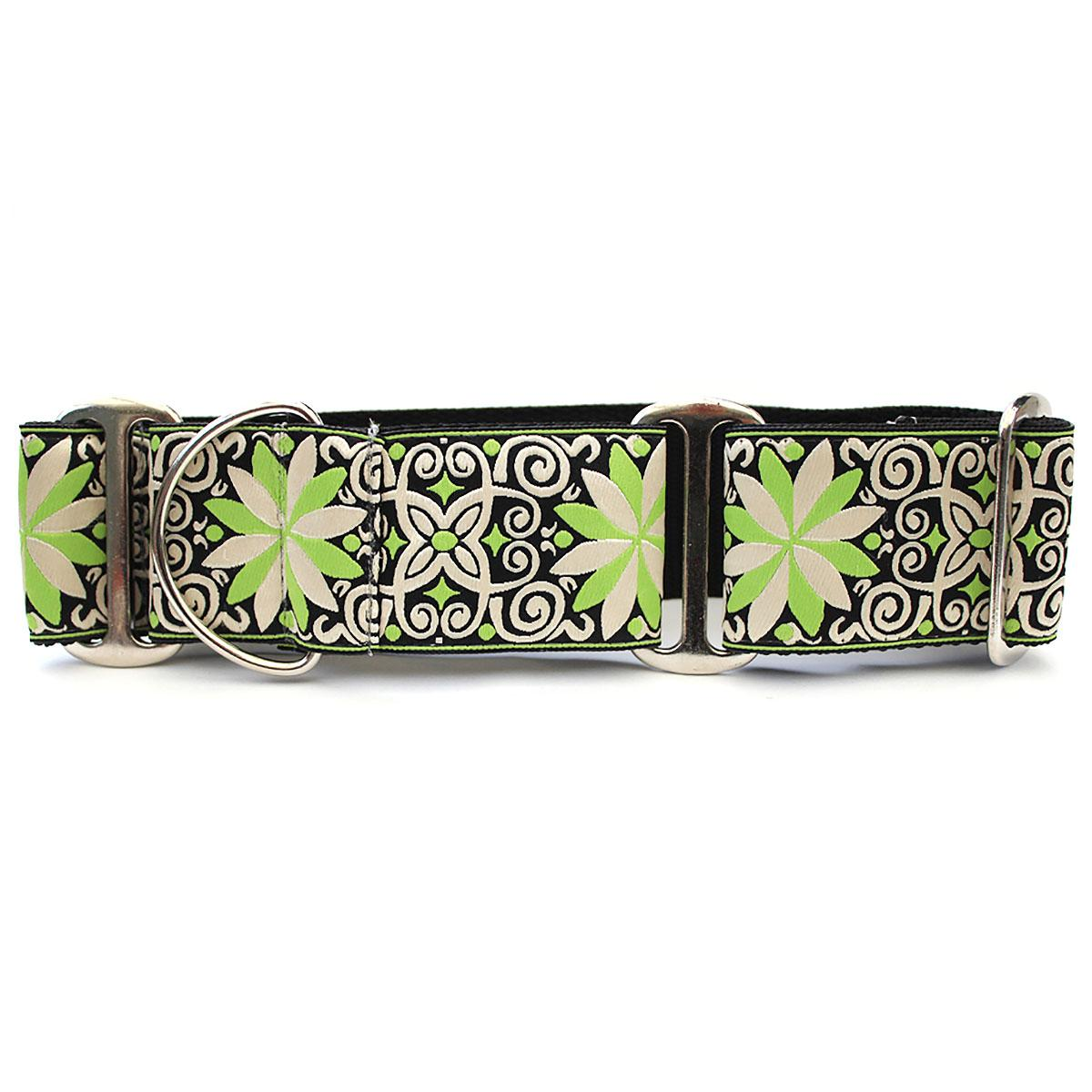 Pinwheel Wide Martingale Dog Collar by Diva Dog - Dutch Spring