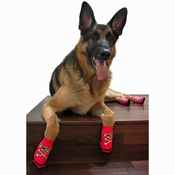 Pirate Girl PAWks Dog Socks