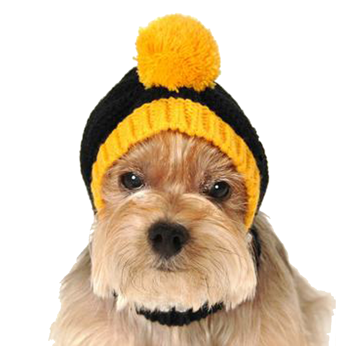 Pittsburgh Steelers Knit Dog Hat  c7ea7563f