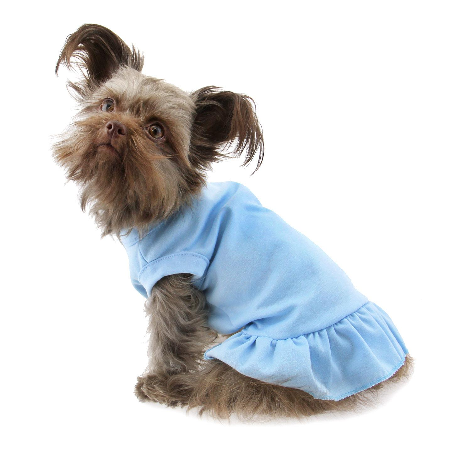 Plain Dog Dress Baby Blue with Same Day Shipping