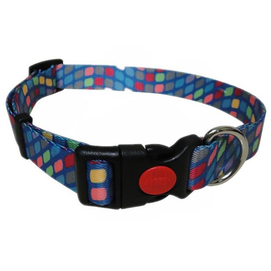 Pop Square Dog Collar - Blue