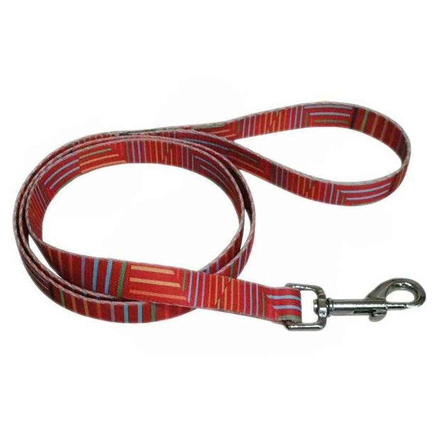Pop Stripe 5' Dog Leash - Orange