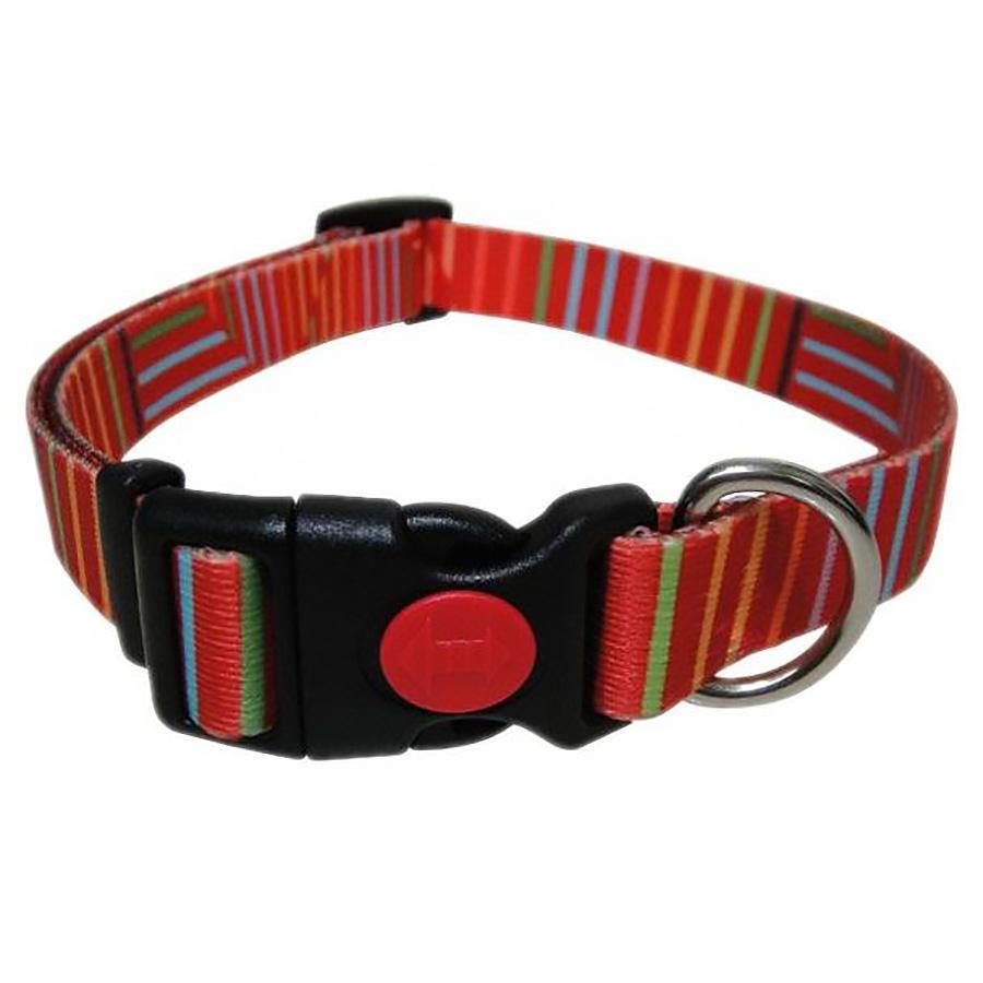 Pop Stripe Dog Collar - Orange
