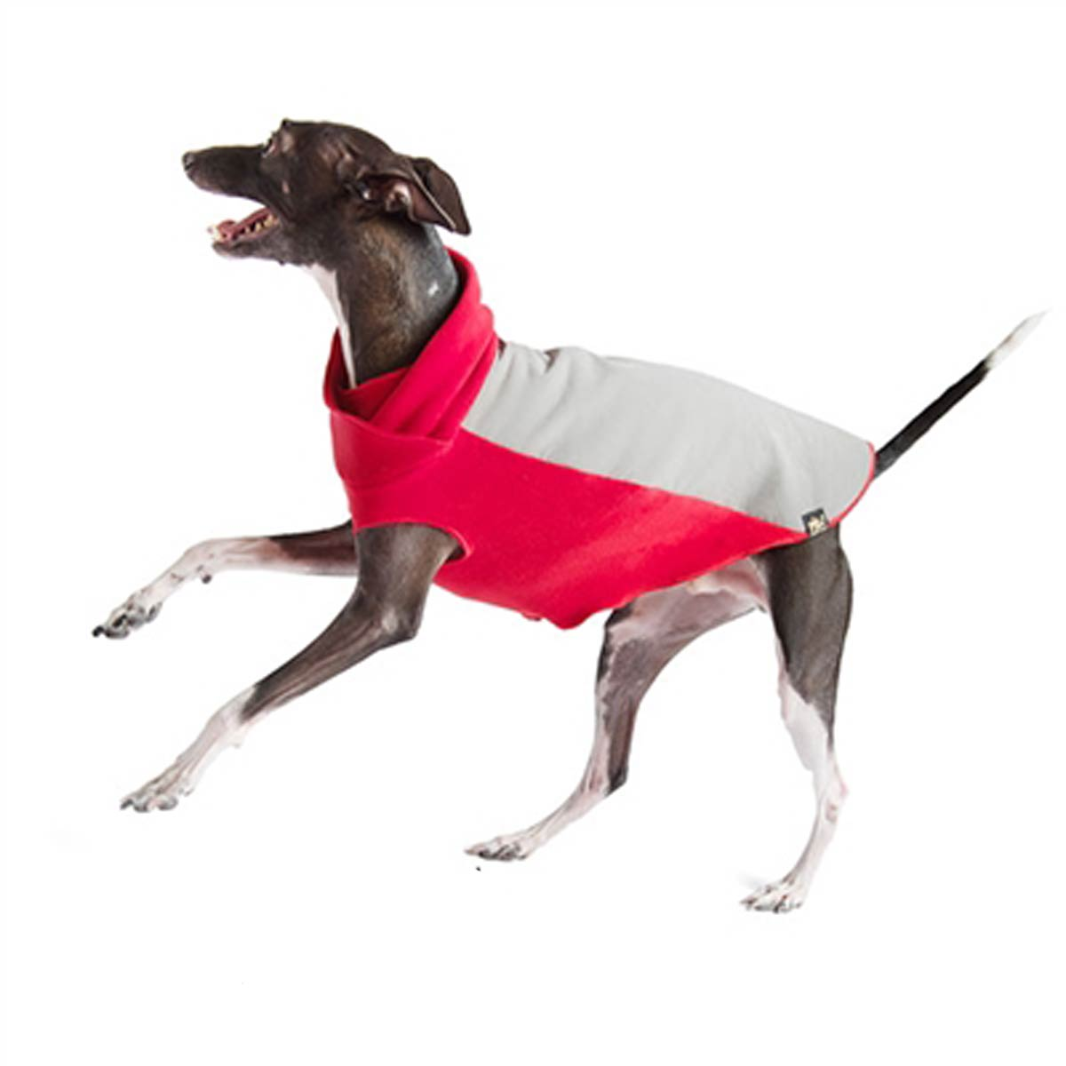 Portland Pullover Dog Jacket - Gray and Red