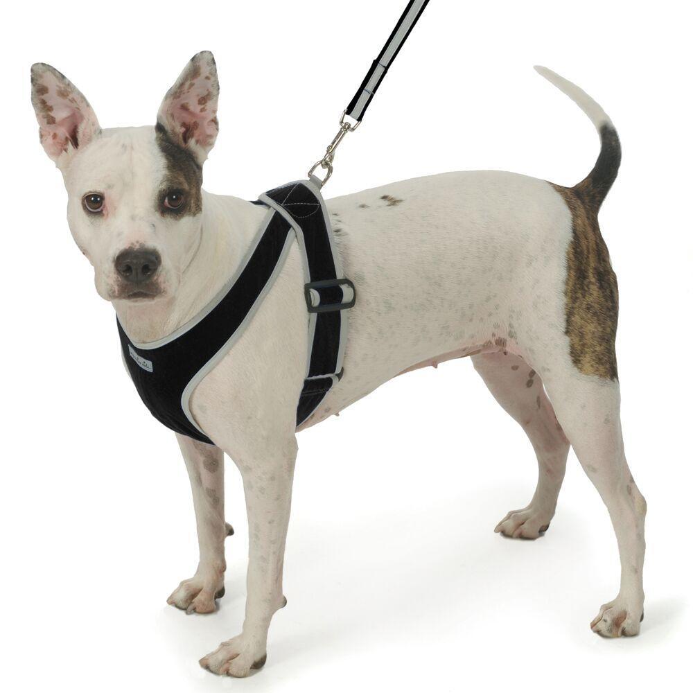 Precision-Fit Nylon Dog Harness - Black