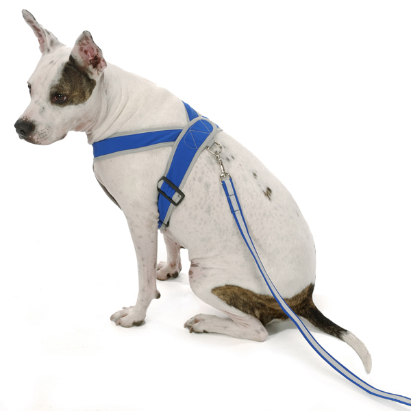 Precision-Fit Nylon Dog Harness - Royal Blue