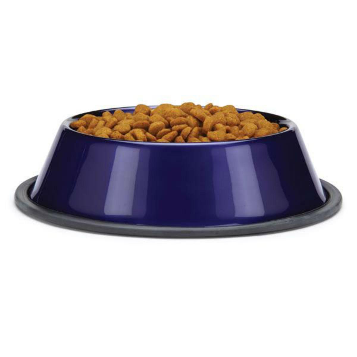 ProSelect DuraGloss Metallic Stainless Steel Dog Bowl - Amethyst