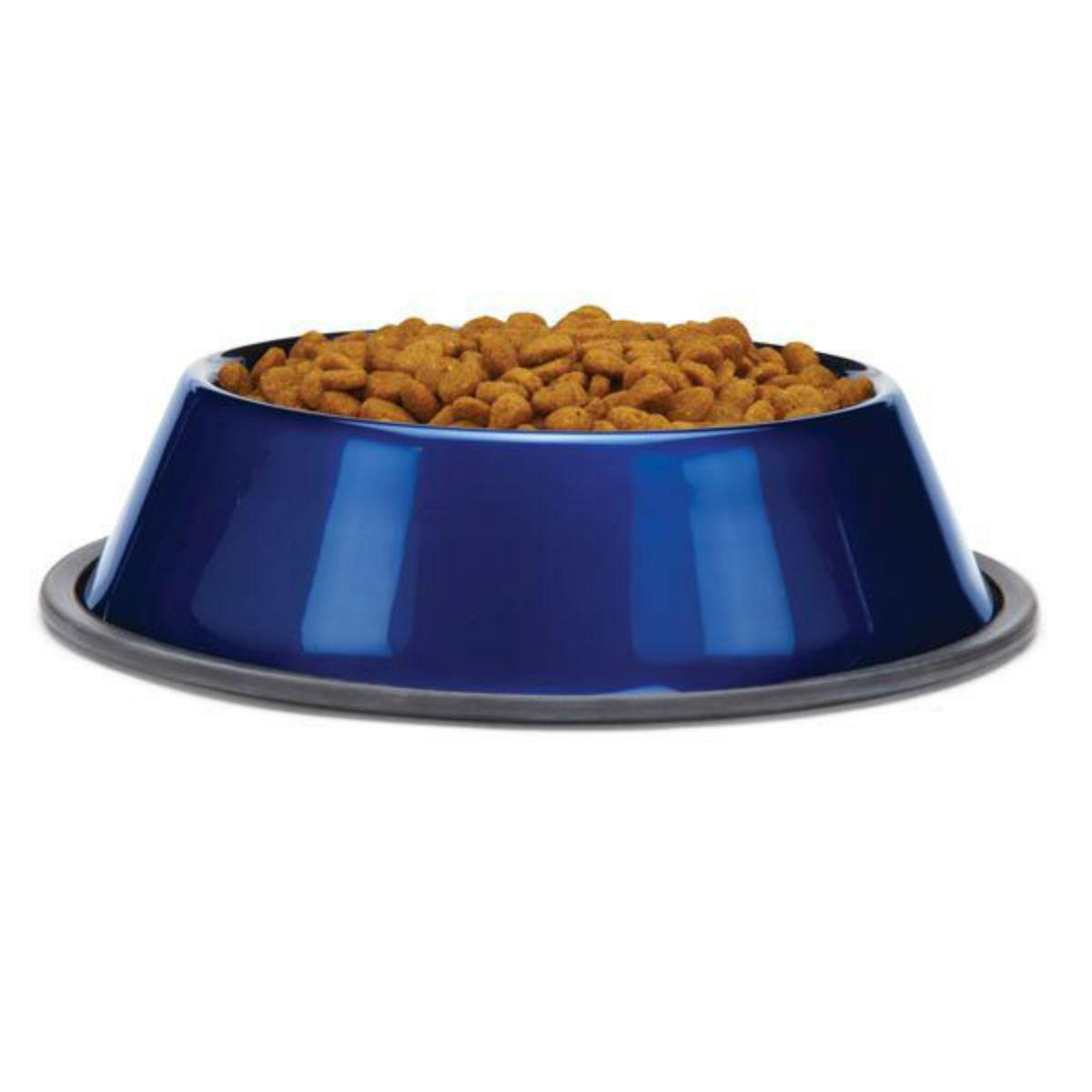ProSelect DuraGloss Metallic Stainless Steel Dog Bowl - Sapphire