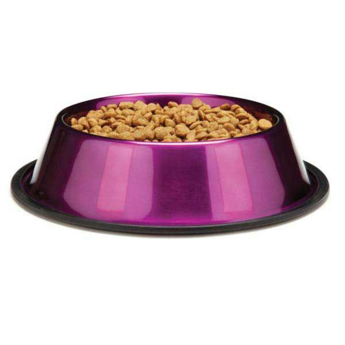 ProSelect DuraGloss Metallic Stainless Steel Dog Bowl - Ruby