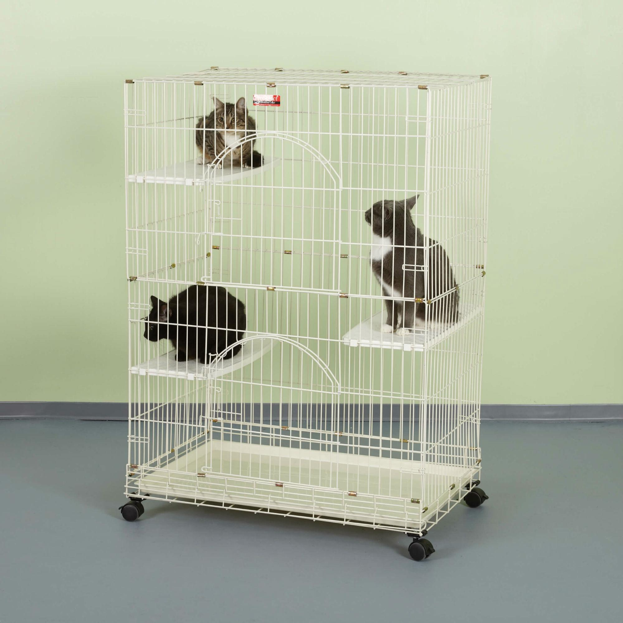 ProSelect Foldable Cat Cage - Ivory