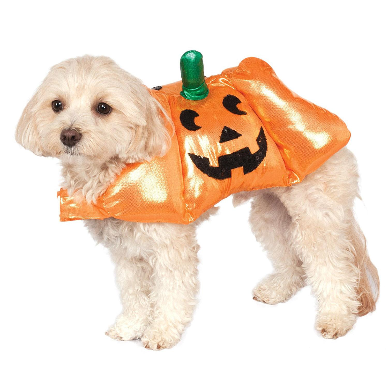 Pup-O-Lantern Halloween Dog Costume