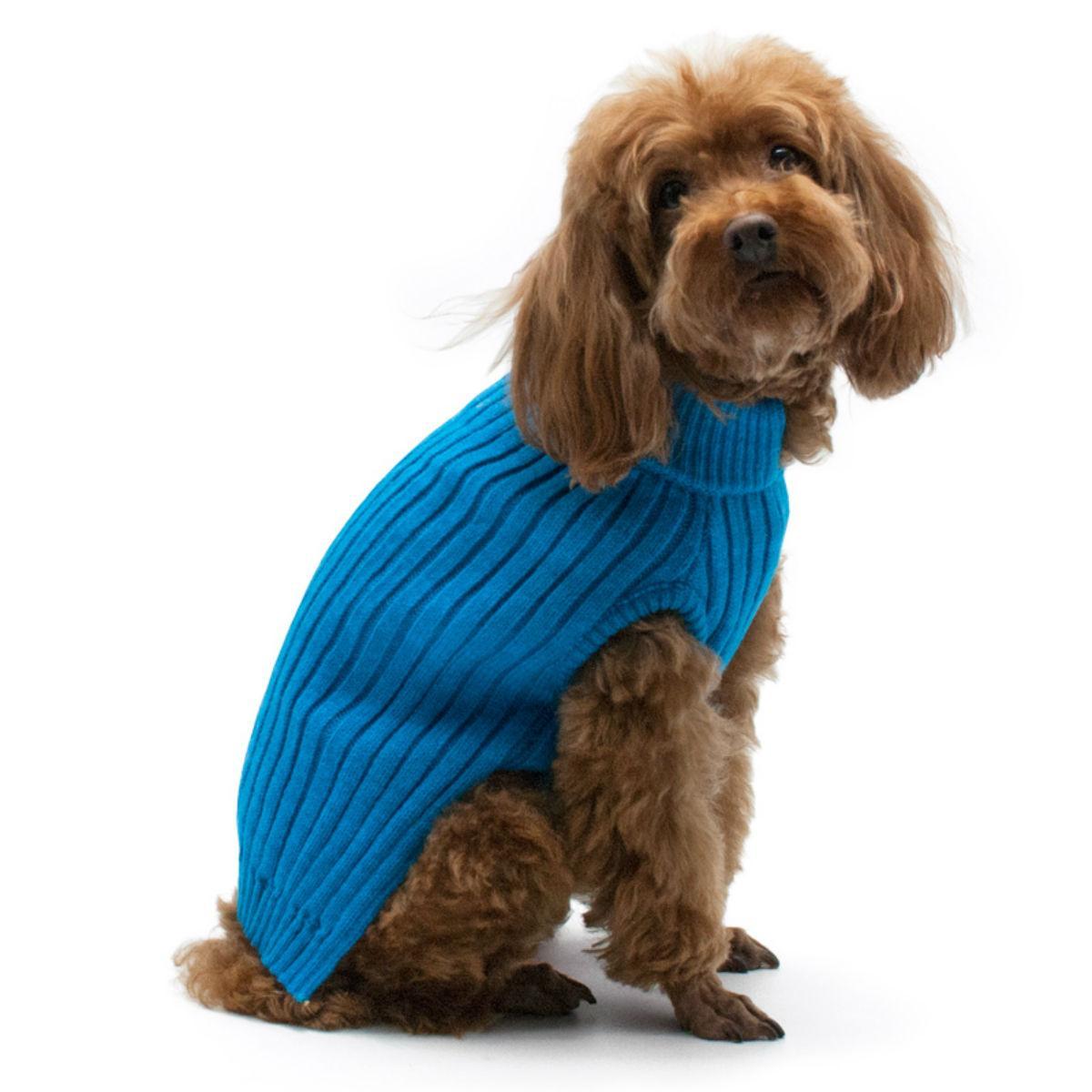 PuppyPAWer Basic Turtleneck Dog Sweater - Blue