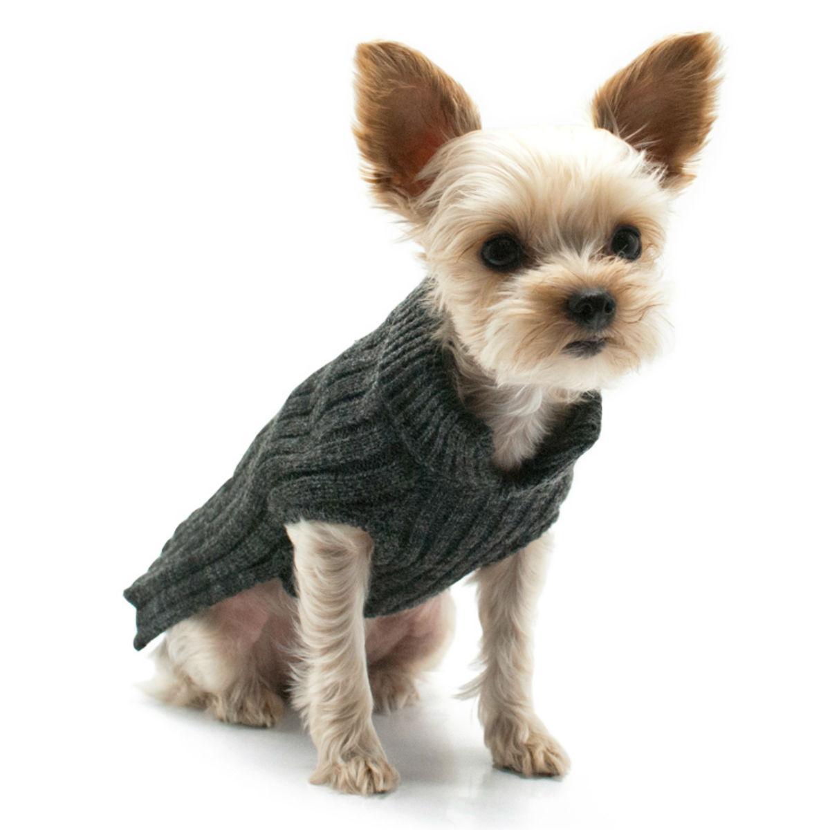 PuppyPAWer Basic Turtleneck Dog Sweater - Charcoal